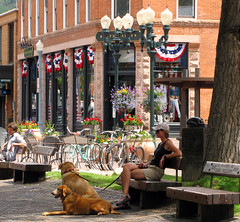 Girl Sitting in the Shade on Cooper (Colorado Sands) Tags: lighting summer usa mountains dogs girl america mall us colorado downtown unitedstates femme mulher cities july perro american shops ces perros rockymountains mulheres aspen benches towns fille  hunde mdchen montanhas chiens montagnes ralphlauren  pedestrianmall lampposts anjing muchacha 81611 mountaintowns montanhasrochosas pitkincounty sandraleidholdt skitowns cooperavenue cityofaspen cooperavenuemall independencebuilding leidholdt