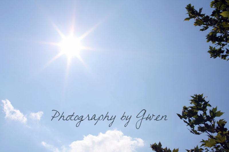 the sun and sky