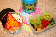 Lunch 8.18.2009 (Bunches and Bits {Karina}) Tags: fruit lunch fresh bento rabbits