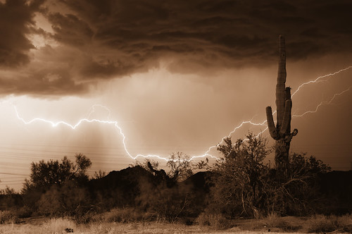 Electric Desert Tangents in Monochrome