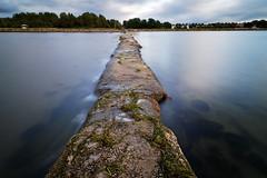 Lomma breakwater (reverse) (claustral) Tags: water coast sweden d200 groyne breakwater lomma nd110