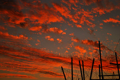 Art in the Sky - Red Clouds over Brisbane (CAUT) Tags: blue sunset red sky cloud silhouette azul backlight atardecer rojo nikon skies dusk brisbane cielo hour hora nubes redsky bluehour cielos silueta aussie dslr nube anochecer redcloud d60 redclouds arrebol caut nikond60 arreboles horaazul
