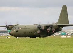 Austrian AF C-130 8T-CC (Flame1958) Tags: dublin lockheed 2009 dub hercules c130 0909 eidw austrianairforce 250909 8tcc