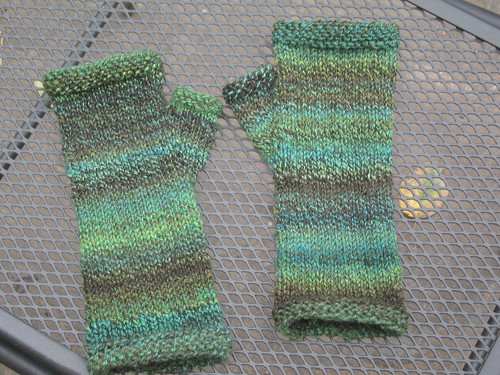 Enchanted Fingerless Mitts