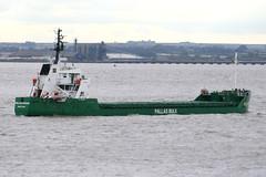 Pallas Ocean (Howard_Pulling) Tags: uk green boat ship vessel cargo estuary hull shipping humber pallas victoriadockhull pallasbulk pallasocean