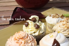 52. Cupcake Assortment (The Cake Couture (is currently not taking any orde) Tags: orange apple lemon chocolate cinnamon cupcake vanilla meringue doha qatar                       thecakecouture