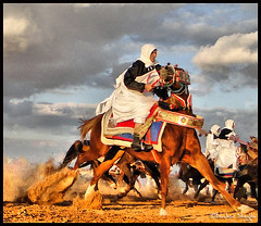 Stop the Runaway Horse ! (Bashar Shglila) Tags: horse festival interesting with action shots sony taken knight libya libyan libia libyen  lbia  libi  libiya liviya libija  alzintan zintan dschx1     lbija  lby libja lbya liiba livi   azzentan