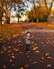 Autumn in London (Muzammil (Moz)) Tags: autumn london regentpark afraaz mozhaps