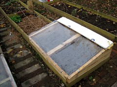 Cold Frame (staceirene) Tags: brooklyn bulbs communitygarden composting coldframe