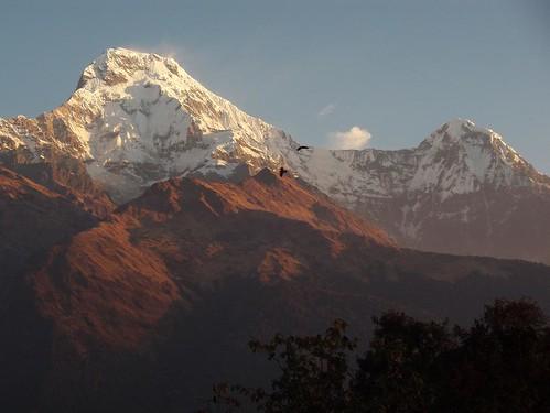 Sunrise - Annapurna South
