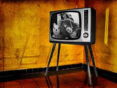 La7 online con nuovi canali su youtube