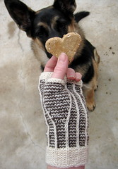 Rinconada mitts (Mary-Heather) Tags: design knitting sockyarn fingerlessgloves fingerlessmitts slippedstitches mydogisawesome rinconadamitts bijoubasintibetandream