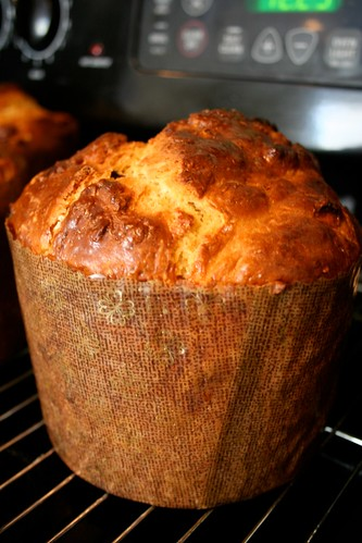 Full-height view of panettone