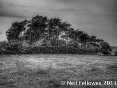 Neil & Anne's North Norfolk Ramble (Neil Fellowes) Tags: flowers blackandwhite monochrome landscapes norfolk railway fishingboats hdr pillbox northnorfolkrailway weybourne northnorfolk sheringhampark weybournebeach neilfellowes weybournestation humphreyrepton norfolklandscape manof2worlds weybourncechurch