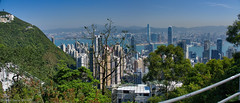 Hong Kong from Victoria Peak lookout