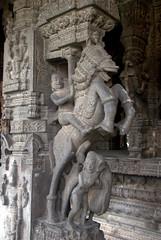 Horse Rider (VinayakH) Tags: kanchipuram india tamilnadu temple sculptures historic religious hindu shiva varadharajaperumaltemple varadharajaperumal vijayanagaraempire