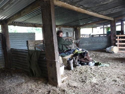 small-ed-morning-barn-harrow-inn
