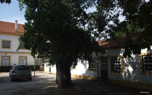 As antigas instalações foram muito bem preservadas, no mais puro estilo antigo português.