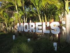 Morel's fresh fruit n veg