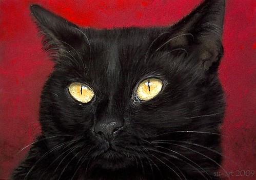 pastel / black cat von Nordlichter4.