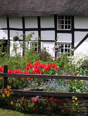 Cottage garden (Katie-Rose) Tags: uk flowers windows blackandwhite wall fence birdtable worcestershire redtulips eckington katierose cottagegarden explored goldenbee excapture fbdg konicaminoltadimagex20
