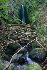 Nichols Falls-4