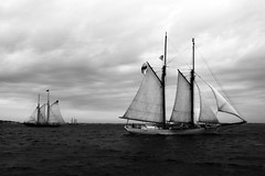 Cape Cod (Intentionally Lost) Tags: ocean sea blackandwhite bw clouds ma bay boat waves ship wind cloudy capecod overcast vessel sail blackwhitephotos kgiantx giantonio kgiantonio kengiantonio