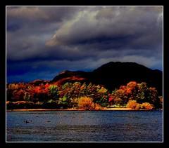(Zuzana Kubatova) Tags: autumn trees sky orange lake mountains color colour fall nature water clouds landscape scotland photo nikon colorful ducks hills loch lochlomond d40 lochlommond colourfu nikond40 zuzanakubatova