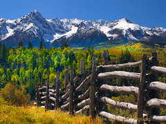 AUTUMN IN ROCKY MOUNTAINS (Aspenbreeze) Tags: autumn trees mountain snow mountains fall geotagged colorado aspens telluride aspen aspentrees theunforgettablepictures sanjaunmountains saariysqualitypictures aspenbreeze luxtop100 solidaritywithcancersolidaridadconelcncer