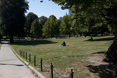 Boston Common (Boston, Massachusetts, United States) Photo