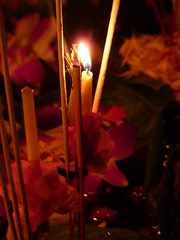 A Kratong floating in the