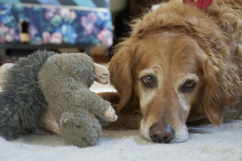 Susie and her squirrel