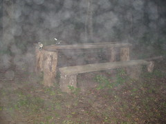Foggy Crude Picnic Table (shoot that!) Tags: blue fog table fishing picnic crude day321 day322 day323 day324