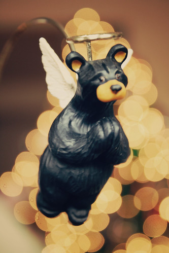 bear angel
