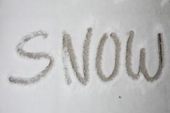 snow (dive-angel (Karin)) Tags: schnee plants white snow balcony pflanzen wintertime weiss vogel hpf eingepackt freu yuhuhu