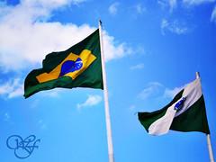 Dos filhos deste solo, s me gentil. (Franco_William) Tags: blue brazil sky azul bandeira brasil flags curitiba parana ceu hdr bandeiras falg