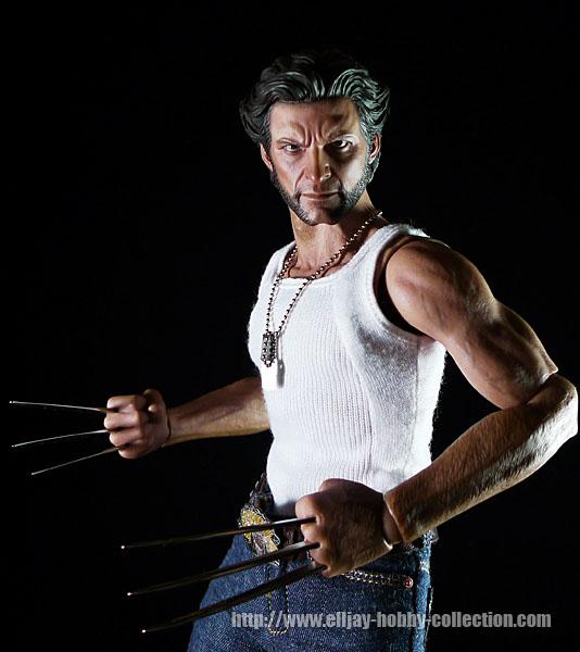Wolverine (12)