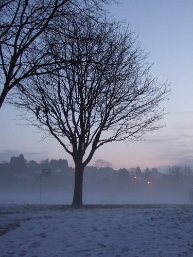 winter 2009 2010 011
