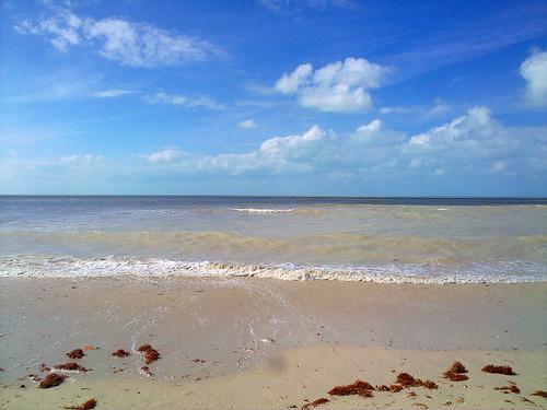 Celestún beach