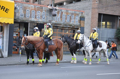 Vancouver Mounted Police on Mooseback?