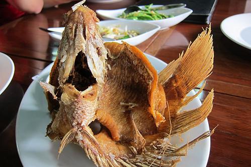 Ikan Gurame- Fish