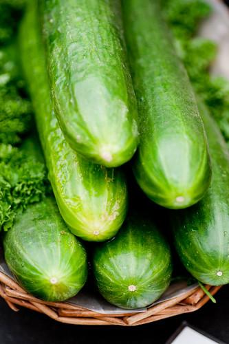 oh cucumbers... e coli!