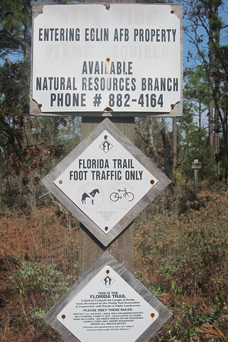 Florida Trail 191