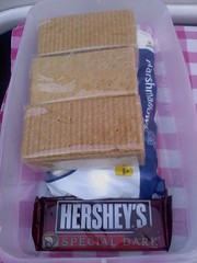 Tasty Travel Series: Make ahead Smores Box