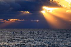 Little sailboats at Sunset - Tel-Aviv beach (Lior. L) Tags: littlesailboatsatsunsettelavivbeach little sailboats sunset telaviv beach travel travelinisrael sea seascapes telavivbeach clouds cloudysunset