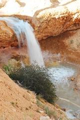 Waterfall (wilsonj4991) Tags: water waterfall cave mossy