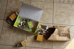 Uglyworld #33 - What The Hell!!! (www.bazpics.com) Tags: home doll open box empty plastic help ugly uglydoll package whatthehell puzzled uglydolls davidhorvath sunminkim uglyworld adevnture uglyverse barryoneilphotography