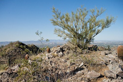 Phoenix Mountain Preserve, Phoenix Arizona