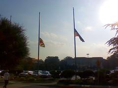 Flags half mast (Dan_DC) Tags: kensington bethesda whiteflint maryland washingtondc suburbs flags halfmast kennedy marylandflag usflag ritual