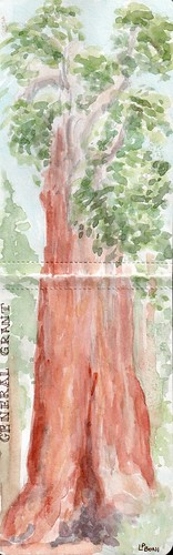 General Grant LPBoni Aug09